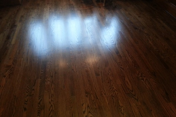 Hardwood Floor Staining GTA